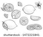 lemons. set citrus. fruits.... | Shutterstock .eps vector #1472221841