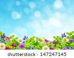 field of wildflowers on the sky ... | Shutterstock . vector #147247145