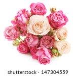 rose flower in over white | Shutterstock . vector #147304559
