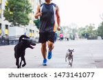 Stock photo shot of a man working out in a park accompanied by his pretty puppies 1473141077