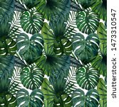 pattern of tropical leaves ... | Shutterstock . vector #1473310547