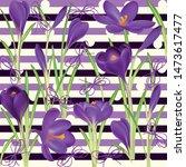 crocuses. crocus. beautiful... | Shutterstock .eps vector #1473617477