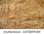 Hay Texture. Hay Bales Are...