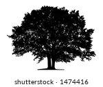 tree  vector  | Shutterstock .eps vector #1474416