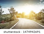 Stone Pathway Under Sunlight I...