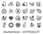 plants icons. mint leaf ... | Shutterstock .eps vector #1475526137