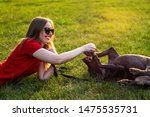 Stock photo girl in red clothing and sunglasses playing with the dog in the green grass on a sunny lawn 1475535731