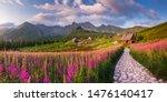 Mountain Landscape  Tatra...