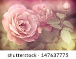 Abstract Romantic Pink Roses...