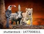 close african animals on... | Shutterstock . vector #1477008311