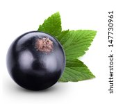 One Black Currant Isolated On...