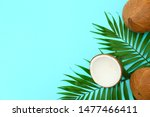 fresh coconuts and palm leaves... | Shutterstock . vector #1477466411