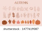 autumn collection of leaves ... | Shutterstock .eps vector #1477619087
