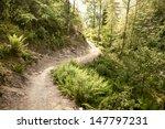 Trail Passing Through Nepal...