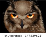 Stock vector the owl 147839621