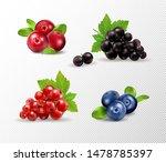 set of vector realistic berries ... | Shutterstock .eps vector #1478785397