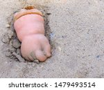 Rubber Hand In The Sand. ...