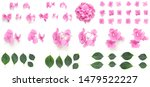 Pink Hydrangea Flowers And...