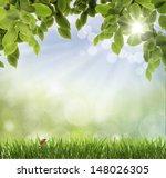 background . ladybug | Shutterstock . vector #148026305