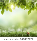 spring or summer season... | Shutterstock . vector #148062929