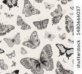 butterflies. seamless pattern.... | Shutterstock .eps vector #1480666037