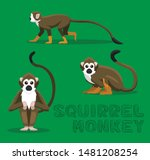 Squirrel Monkey Cartoon Vector...
