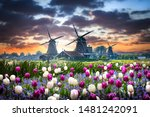 Netherlands Landscape With...