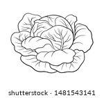 black and white vector... | Shutterstock .eps vector #1481543141