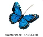 A Blue Butterfly Isolated On...