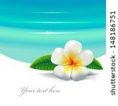 white tropical flower and blue... | Shutterstock .eps vector #148186751
