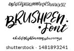 hand drawn font. calligraphy... | Shutterstock .eps vector #1481893241
