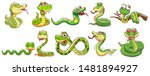 Snake Vector Set Graphic...