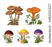 mushroom set. three kinds of... | Shutterstock .eps vector #1482221327