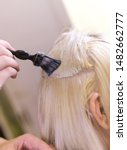 dying hair after bleaching in... | Shutterstock . vector #1482662777