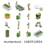 tea industry production... | Shutterstock .eps vector #1482912854