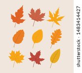 variety of autumn leaves  ... | Shutterstock .eps vector #1483414427