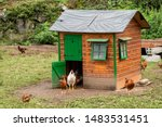 Henhouse as a small house or...