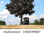 Golfers Park Their Cart Under...