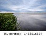 Hecla Island Marsh Manitoba Province