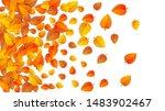 Autumn Golden Leaf Frame...