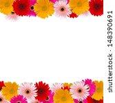 herbera flowers frame isolated... | Shutterstock . vector #148390691