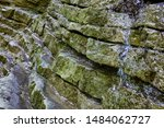 Layered Slabs Of Triassic...