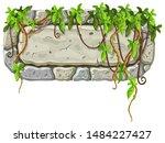 stone board decoration liana...   Shutterstock .eps vector #1484227427