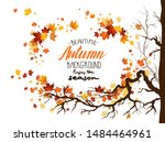 seasonal image with leaves and... | Shutterstock .eps vector #1484464961