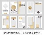 stories vector set for social... | Shutterstock .eps vector #1484511944