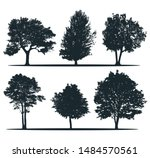 tree silhouettes   ash  willow  ... | Shutterstock .eps vector #1484570561