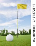 Small photo of Yellow flag on golf course putting green with a ball near the hole