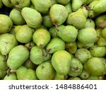 the nashi pears piled on the... | Shutterstock . vector #1484886401