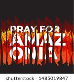 Pray For Amazonia Forest Fires...