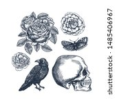 raven  flowers  human skull and ... | Shutterstock .eps vector #1485406967